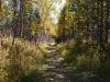 Верхняя дорога на Витязь