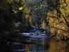 Река Большая Олха