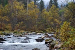 Река Бабха